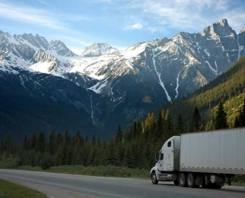 Trucker with CDL license